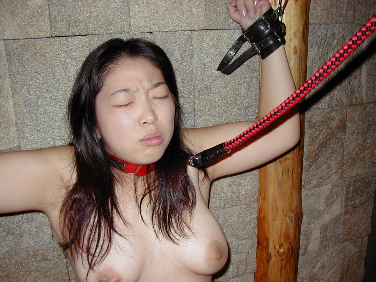 Chubby Japanese high school girls outdoor flashing and dirty sex, SM photos leaked
